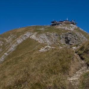 Nebelhorn-Südgrat - Kurz vor dem Gipfel
