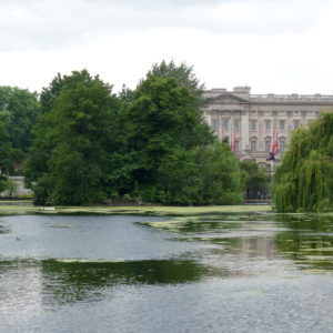 Buckingham Palace VI