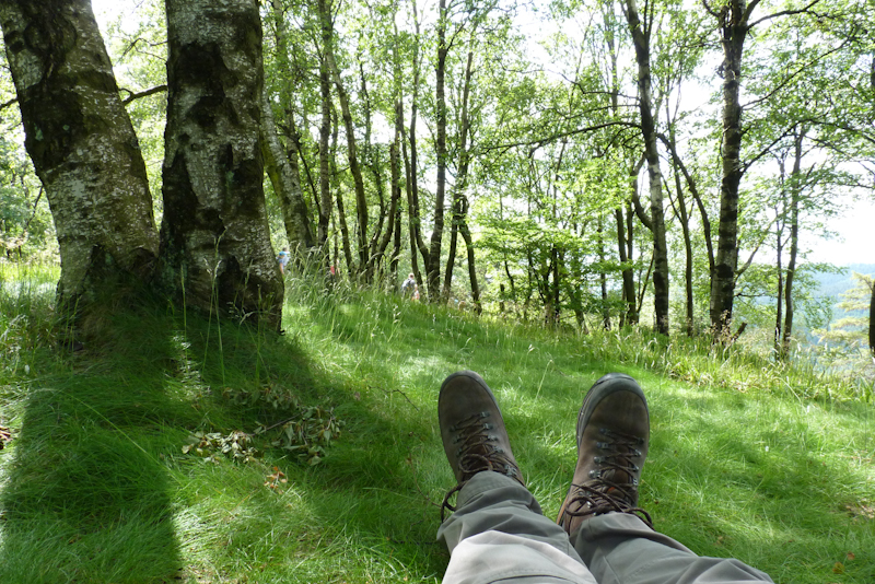 Single wandern taunus