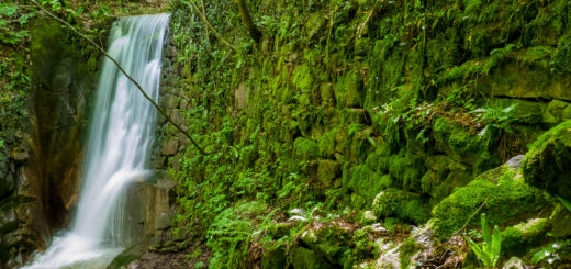 Rastenbachklamm: Wasserfall V
