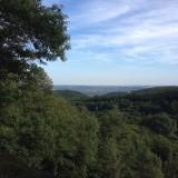 Aussicht ins Rheintal über Kiedrich